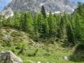 Die Dolomiten im Juni