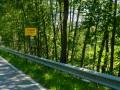 Motorrad-Tour-Bayern-Tag2-09
