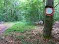 Motorrad-Tour-Saarland-07