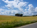 Motorrad-Tour-Eifel-16