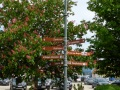 Motorradtour-Usedom-Ruegen-1050033